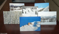 FREE Greeting Cards with Fine Art Mounted Print Orders