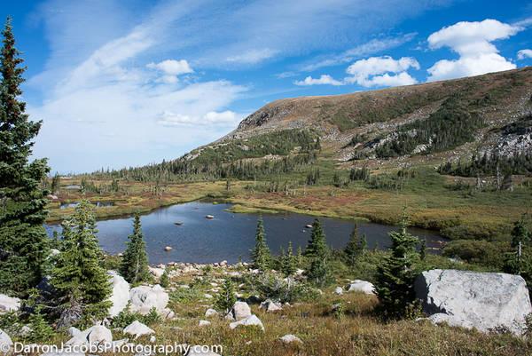 Alpine lake Meadow