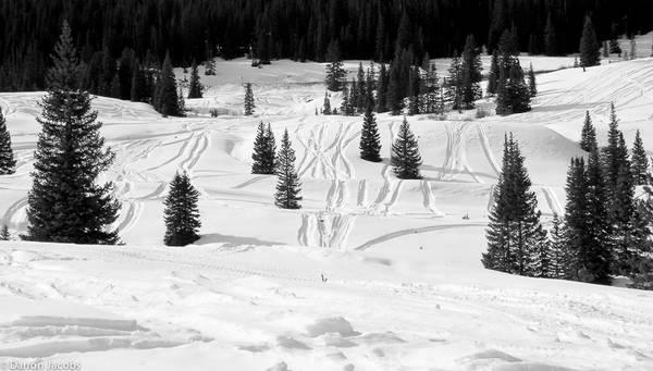 Molas Pass Tracks in the Snow