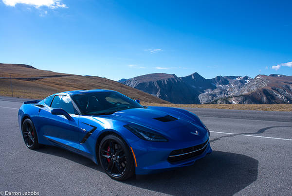 Stingray in the Mountains