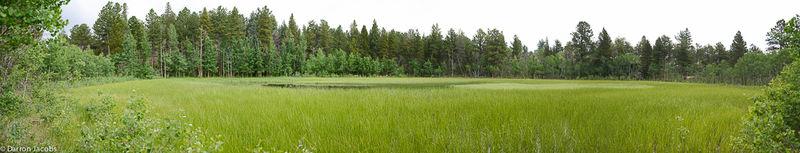 Bar-K-Ranch Pond