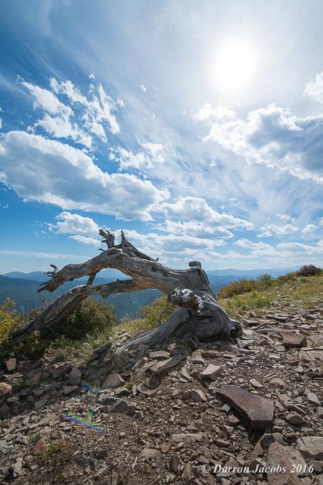 Sugarloaf Mountain, Boulder. Colorado, Sunburst, Dead Log Fine Art, Darron Jacobs, Fine Art, Mountain, Landscape, Adventure...
